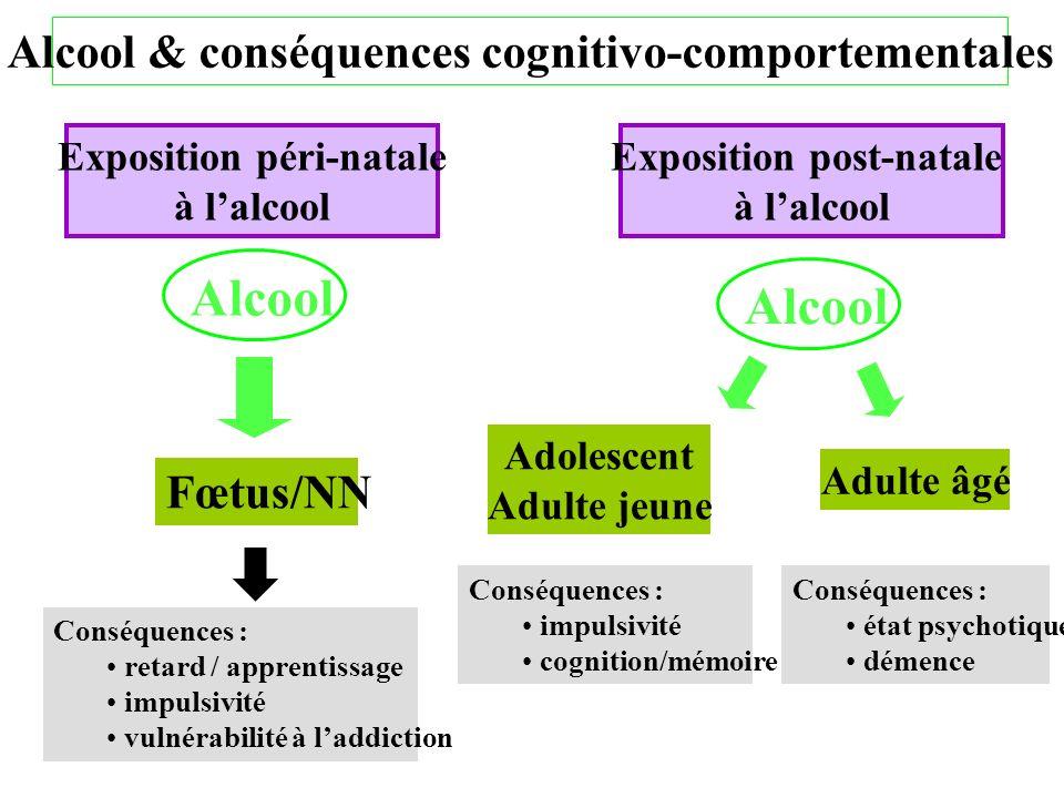 Alcool & conséquences cognitivo-comportementales Fœtus/NN Alcool Conséquences : retard / apprentissage impulsivité vulnérabilité à laddiction Expositi