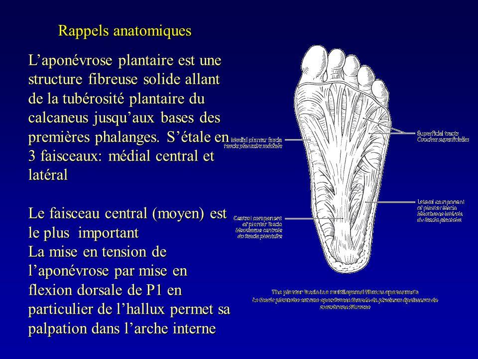 Rappels anatomiques Laponévrose plantaire est une structure fibreuse solide allant de la tubérosité plantaire du calcaneus jusquaux bases des première