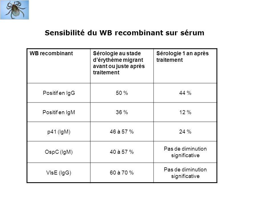 Diagnostic de neuroborréliose Repose sur clinique évocatrice et sérologie IgG + dans sérum dans 75 à 95 % des cas sérologie dans LCR est + dans 100 % des cas (attention : utilisation dune kit adapté au LCR) attention : en phase débutante possibilité de : IgM + et IgG + ou – dans sérum -> rechercher augmentation des IgG entre deux sérums si premier est précoce rechercher impérativement une synthèse intrathécale (sensibilité 75 % et spécificité 97 %) réactions croisées : au moins un WB sur sérum