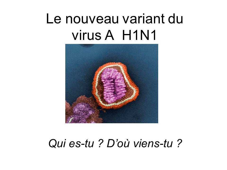 Virus influenzae Famille : ORTHOMYXOVIRIDAE Genre : Influenza virus 3 types : A, B (grippe) et C (rhinopharyngites)