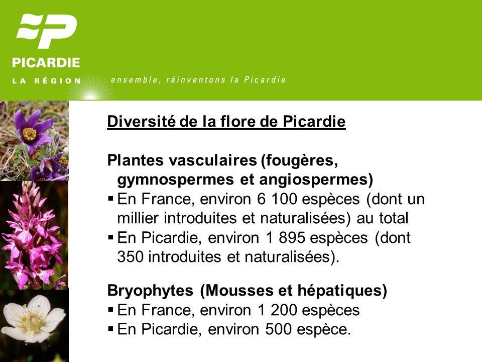 Diversité de la flore de Picardie Plantes vasculaires (fougères, gymnospermes et angiospermes) En France, environ 6 100 espèces (dont un millier intro
