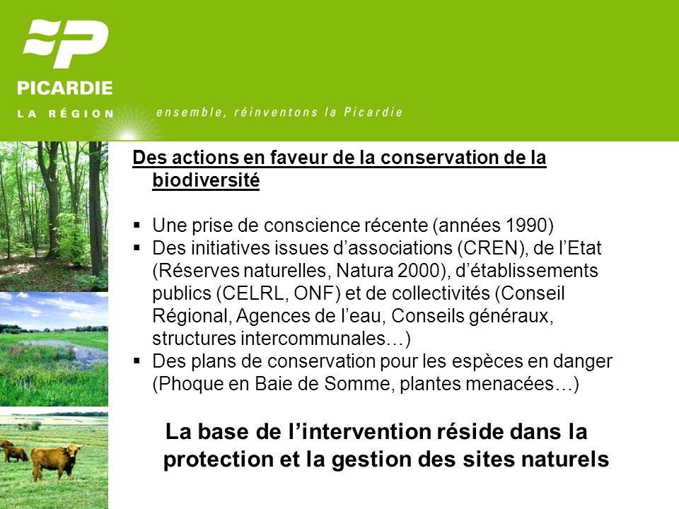Des actions en faveur de la conservation de la biodiversité Une prise de conscience récente (années 1990) Des initiatives issues dassociations (CREN), de lEtat (Réserves naturelles, Natura 2000), détablissements publics (CELRL, ONF) et de collectivités (Conseil Régional, Agences de leau, Conseils généraux, structures intercommunales…) Des plans de conservation pour les espèces en danger (Phoque en Baie de Somme, plantes menacées…) La base de lintervention réside dans la protection et la gestion des sites naturels