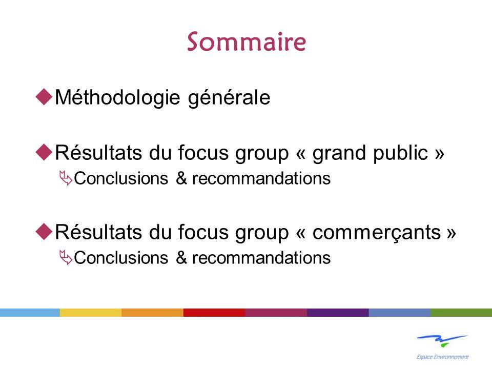 Sommaire Méthodologie générale Résultats du focus group « grand public » Conclusions & recommandations Résultats du focus group « commerçants » Conclu