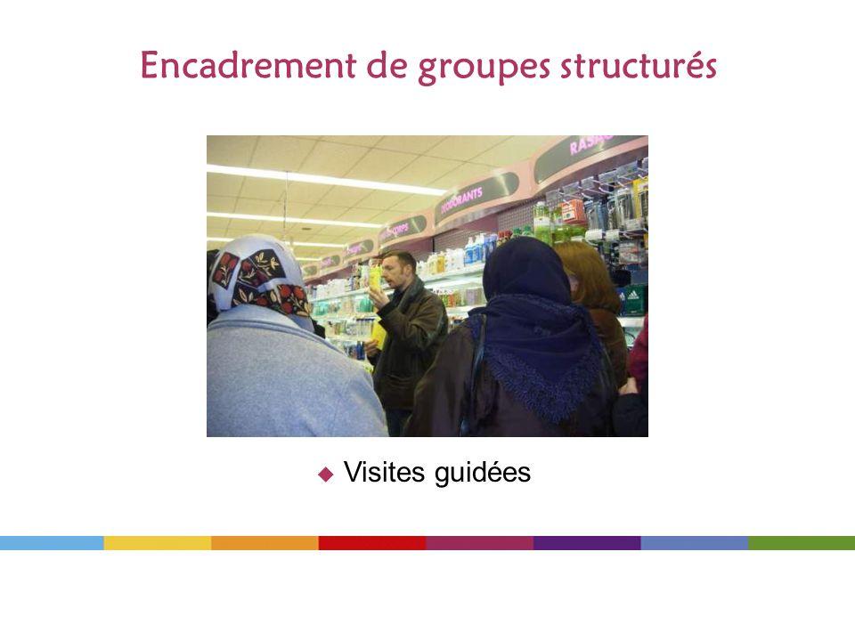 Encadrement de groupes structurés Visites guidées