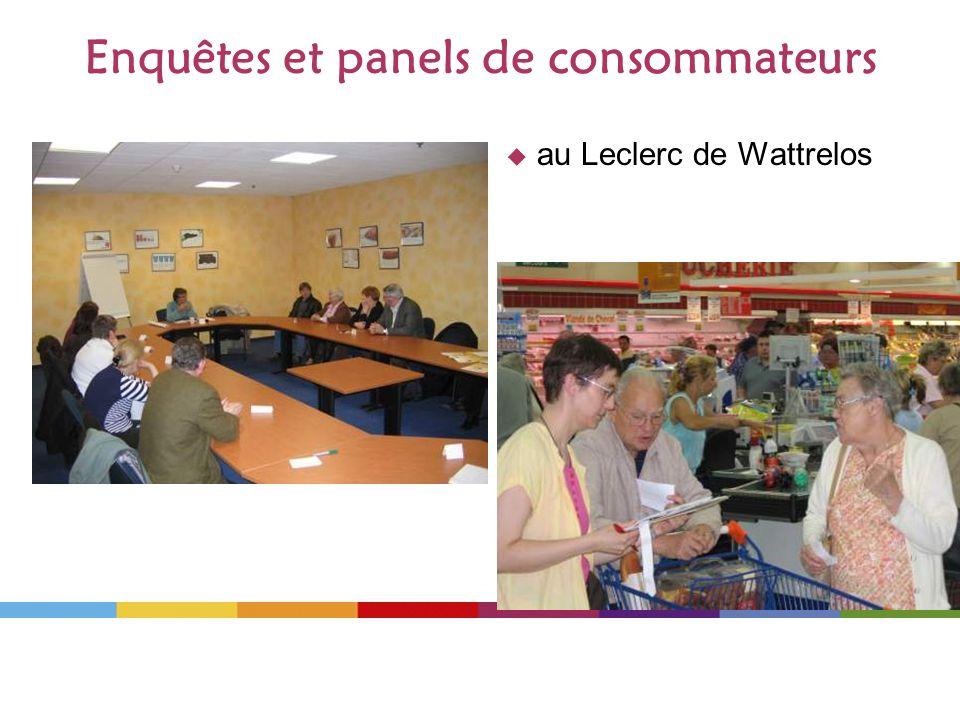 Enquêtes et panels de consommateurs au Leclerc de Wattrelos