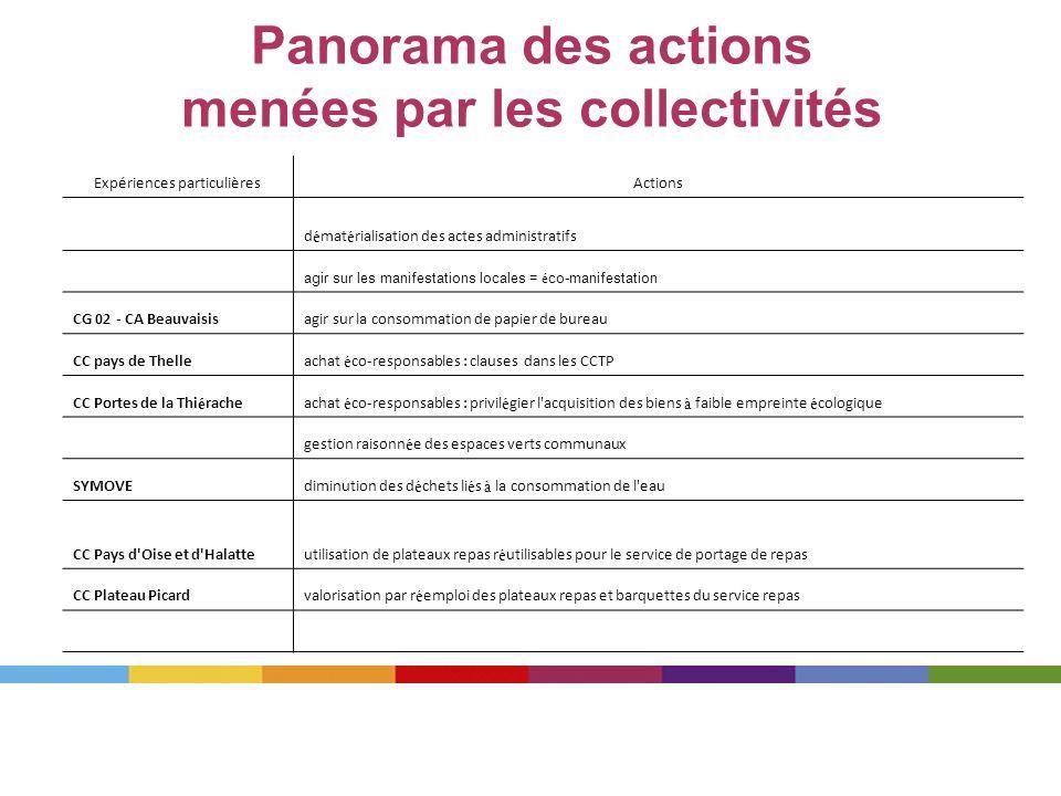 Panorama des actions menées par les collectivités Expériences particulièresActions d é mat é rialisation des actes administratifs agir sur les manifes
