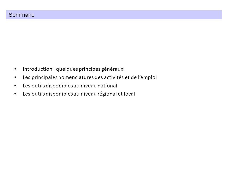 Introduction : quelques principes généraux Les principales nomenclatures des activités et de lemploi Les outils disponibles au niveau national Les out