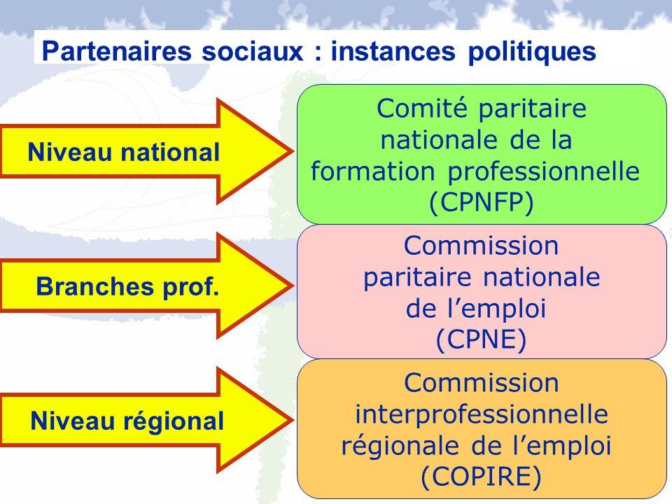 Commission paritaire nationale de lemploi (CPNE) Commission interprofessionnelle régionale de lemploi (COPIRE) Partenaires sociaux : instances politiq