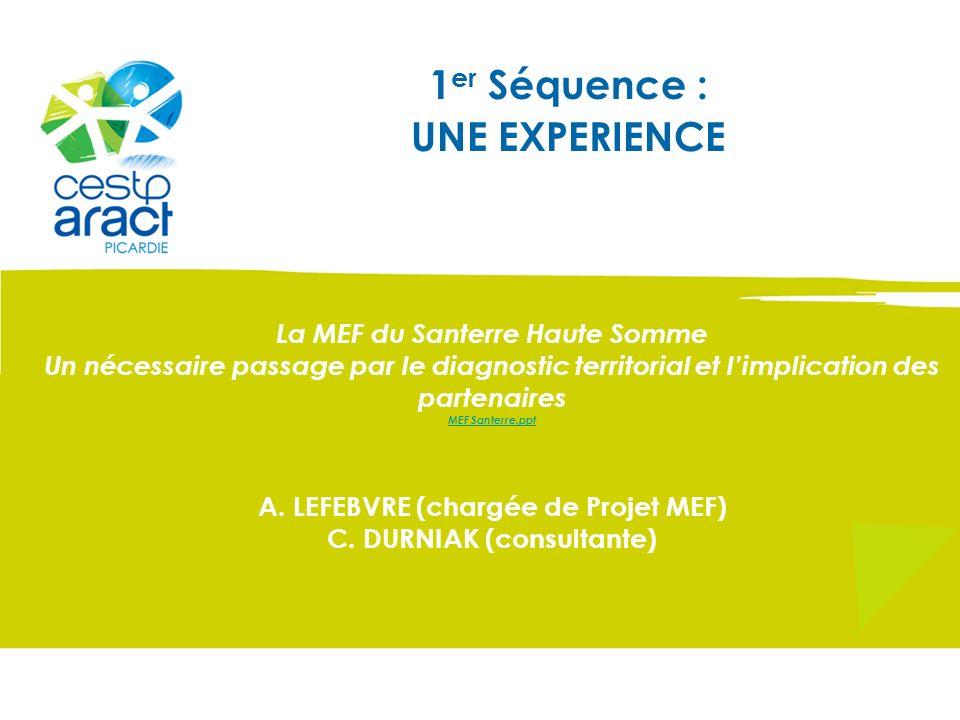 1 er Séquence : UNE EXPERIENCE La MEF du Santerre Haute Somme Un nécessaire passage par le diagnostic territorial et limplication des partenaires MEF