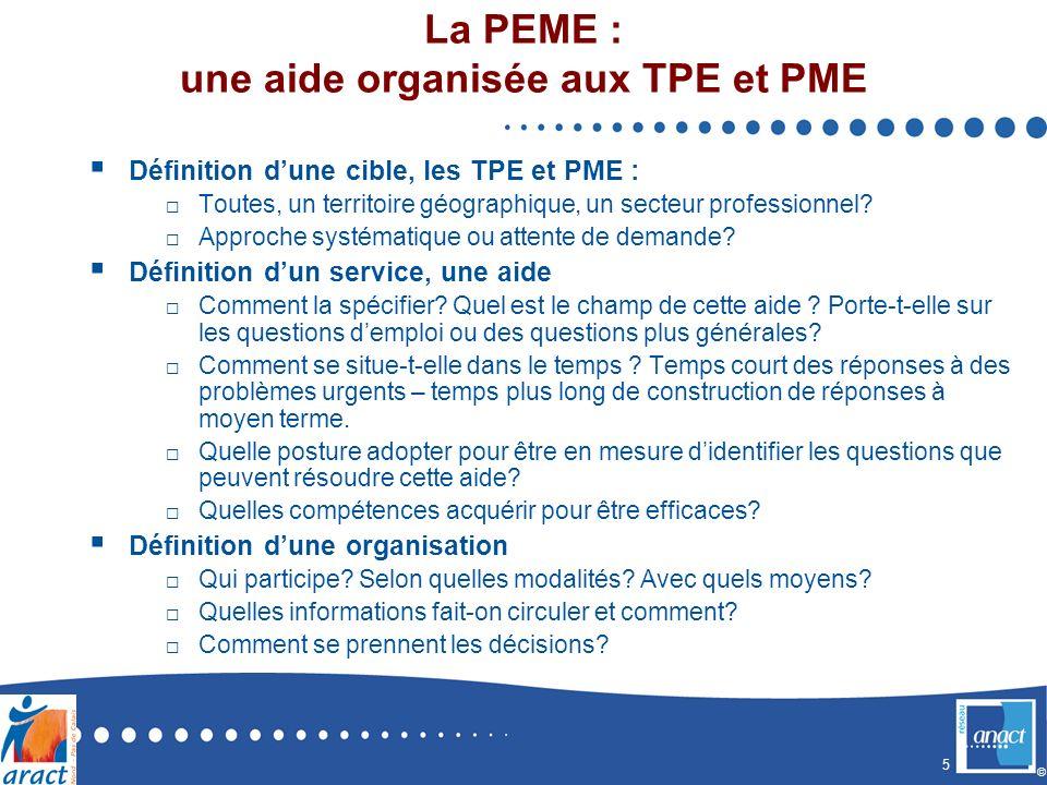 5 © La PEME : une aide organisée aux TPE et PME Définition dune cible, les TPE et PME : Toutes, un territoire géographique, un secteur professionnel.