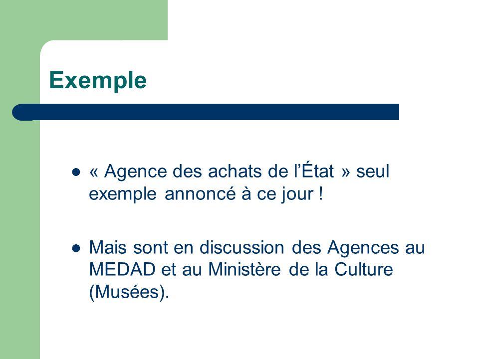 Exemple « Agence des achats de lÉtat » seul exemple annoncé à ce jour .
