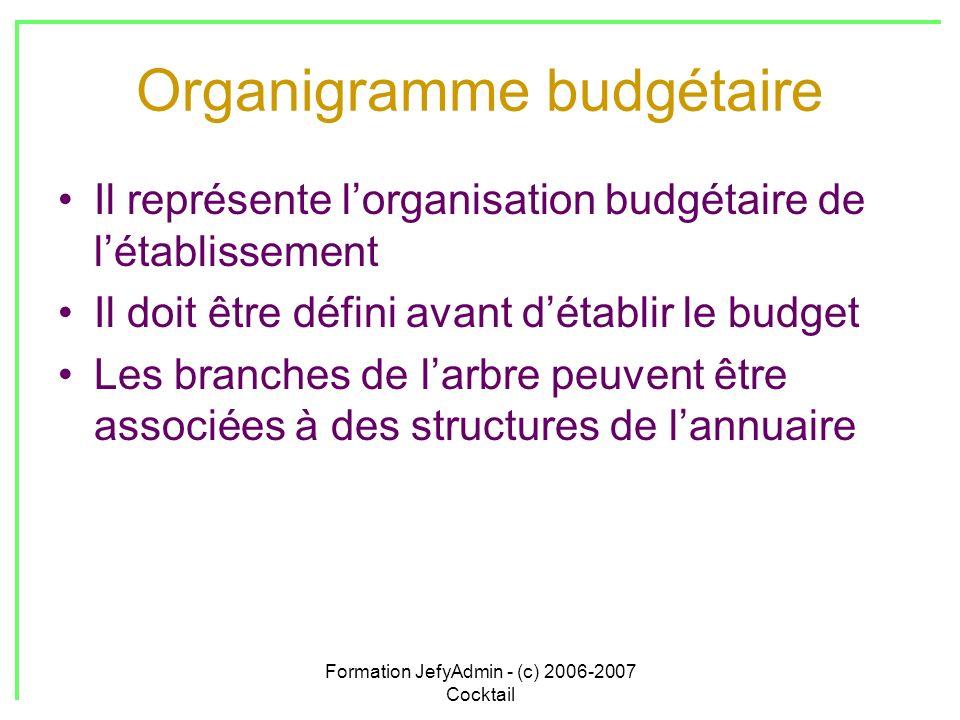 Formation JefyAdmin - (c) 2006-2007 Cocktail Organigramme budgétaire Il représente lorganisation budgétaire de létablissement Il doit être défini avan