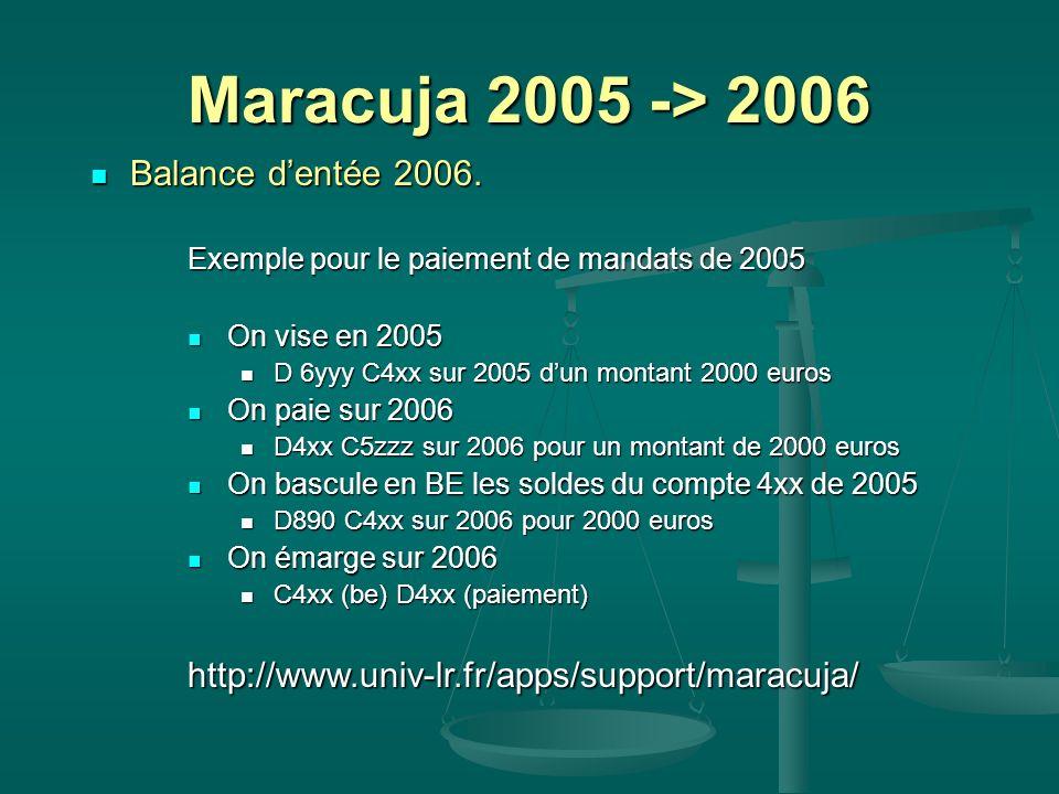 Balance dentée 2006. Balance dentée 2006. Exemple pour le paiement de mandats de 2005 On vise en 2005 On vise en 2005 D 6yyy C4xx sur 2005 dun montant