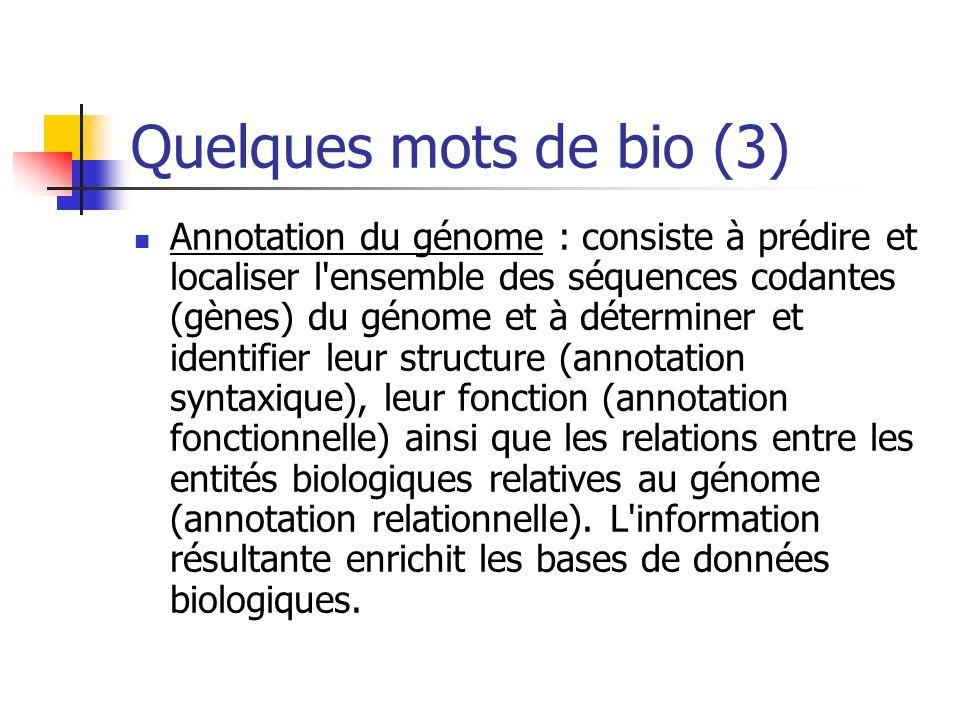 Quelques mots de bio (3) Annotation du génome : consiste à prédire et localiser l ensemble des séquences codantes (gènes) du génome et à déterminer et identifier leur structure (annotation syntaxique), leur fonction (annotation fonctionnelle) ainsi que les relations entre les entités biologiques relatives au génome (annotation relationnelle).