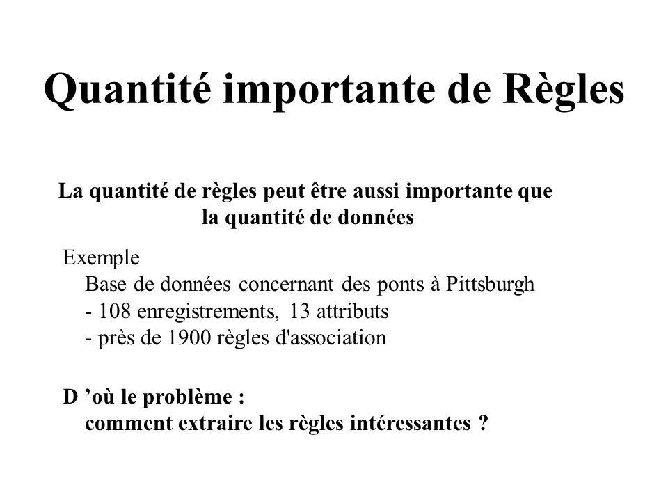 Quantité importante de Règles La quantité de règles peut être aussi importante que la quantité de données Exemple Base de données concernant des ponts
