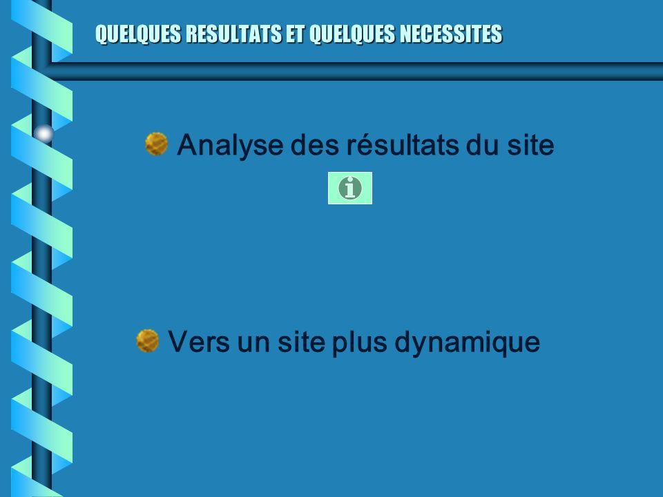 QUELQUES RESULTATS ET QUELQUES NECESSITES Analyse des résultats du site Vers un site plus dynamique