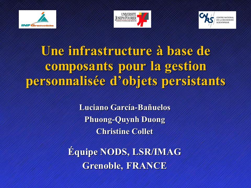 Une infrastructure à base de composants pour la gestion personnalisée dobjets persistants Luciano García-Bañuelos Phuong-Quynh Duong Christine Collet