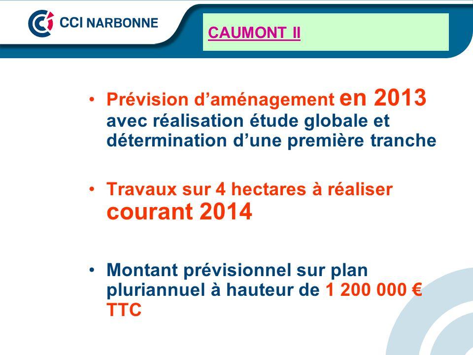 CAUMONT II Prévision daménagement en 2013 avec réalisation étude globale et détermination dune première tranche Travaux sur 4 hectares à réaliser cour