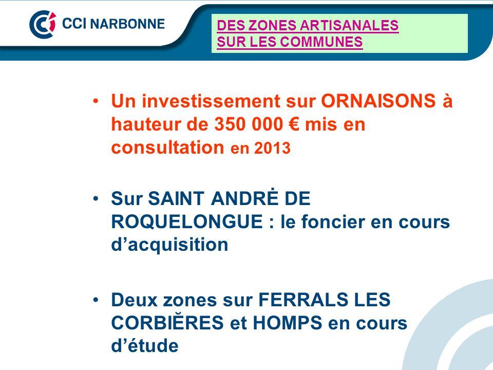 DES ZONES ARTISANALES SUR LES COMMUNES Un investissement sur ORNAISONS à hauteur de 350 000 mis en consultation en 2013 Sur SAINT ANDRĖ DE ROQUELONGUE