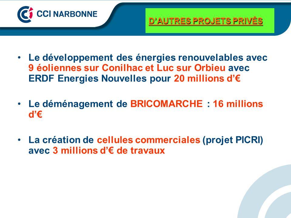 DAUTRES PROJETS PRIVĖS Le développement des énergies renouvelables avec 9 éoliennes sur Conilhac et Luc sur Orbieu avec ERDF Energies Nouvelles pour 2