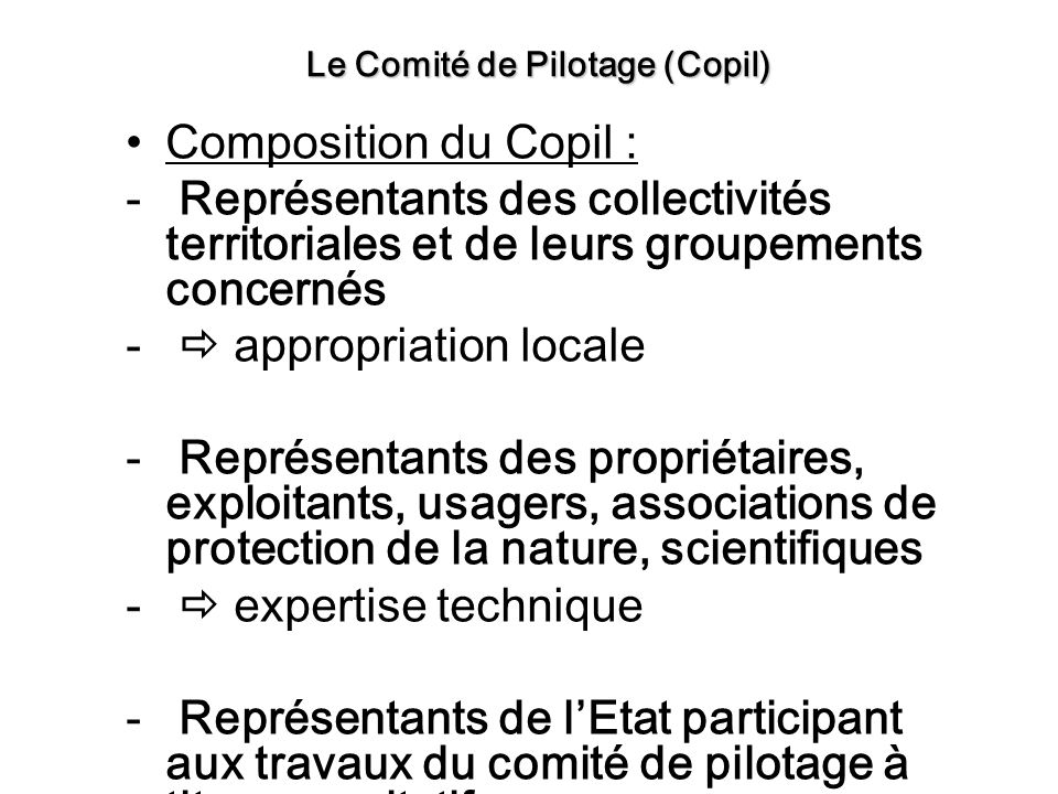 Composition du Copil : - Représentants des collectivités territoriales et de leurs groupements concernés - appropriation locale - Représentants des pr