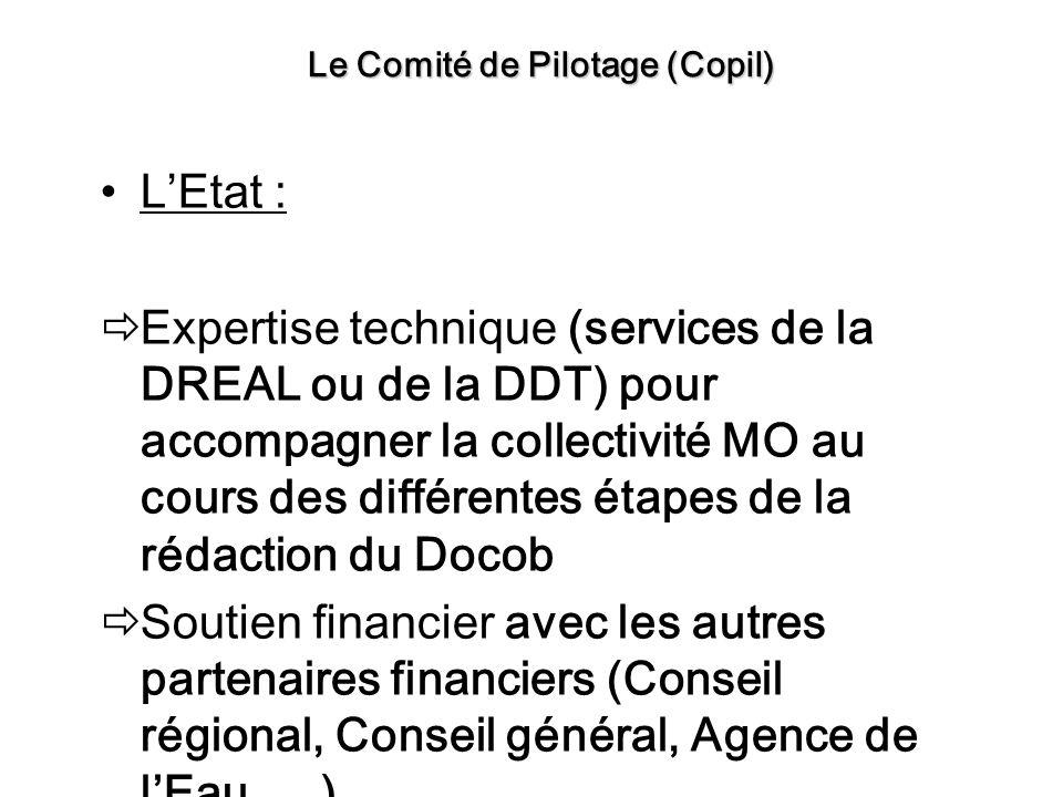 LEtat : Expertise technique (services de la DREAL ou de la DDT) pour accompagner la collectivité MO au cours des différentes étapes de la rédaction du Docob Soutien financier avec les autres partenaires financiers (Conseil régional, Conseil général, Agence de lEau, …) Approbation du Docob