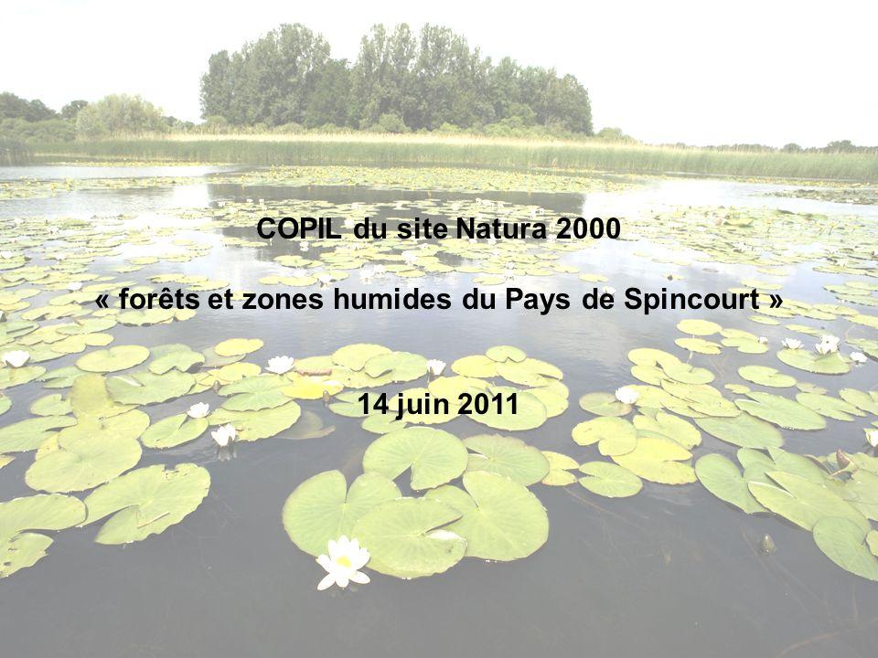 COPIL du site Natura 2000 « forêts et zones humides du Pays de Spincourt » 14 juin 2011