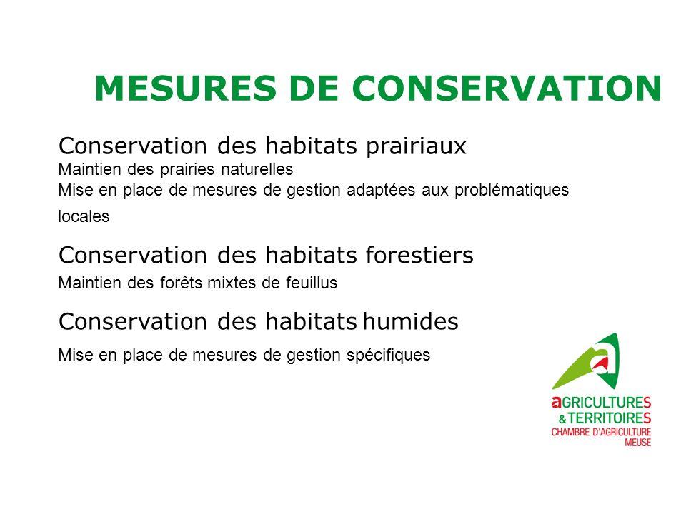 MESURES DE CONSERVATION Conservation des habitats prairiaux Maintien des prairies naturelles Mise en place de mesures de gestion adaptées aux probléma