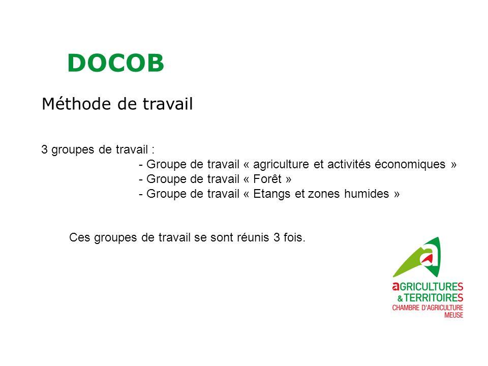 DOCOB Méthode de travail 3 groupes de travail : - Groupe de travail « agriculture et activités économiques » - Groupe de travail « Forêt » - Groupe de travail « Etangs et zones humides » Ces groupes de travail se sont réunis 3 fois.