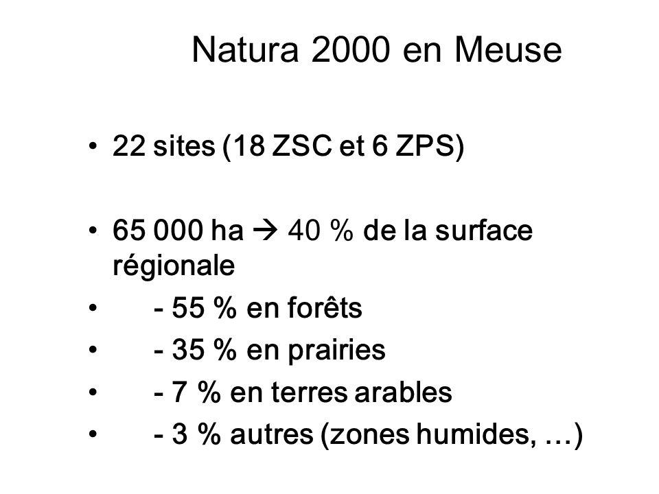Natura 2000 en Meuse 22 sites (18 ZSC et 6 ZPS) 65 000 ha 40 % de la surface régionale - 55 % en forêts - 35 % en prairies - 7 % en terres arables - 3