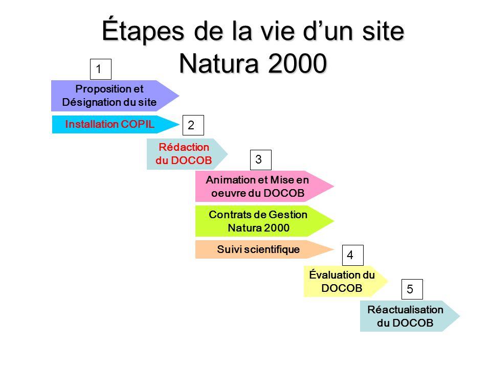 Étapes de la vie dun site Natura 2000 Rédaction du DOCOB Animation et Mise en oeuvre du DOCOB Contrats de Gestion Natura 2000 Évaluation du DOCOB Réac