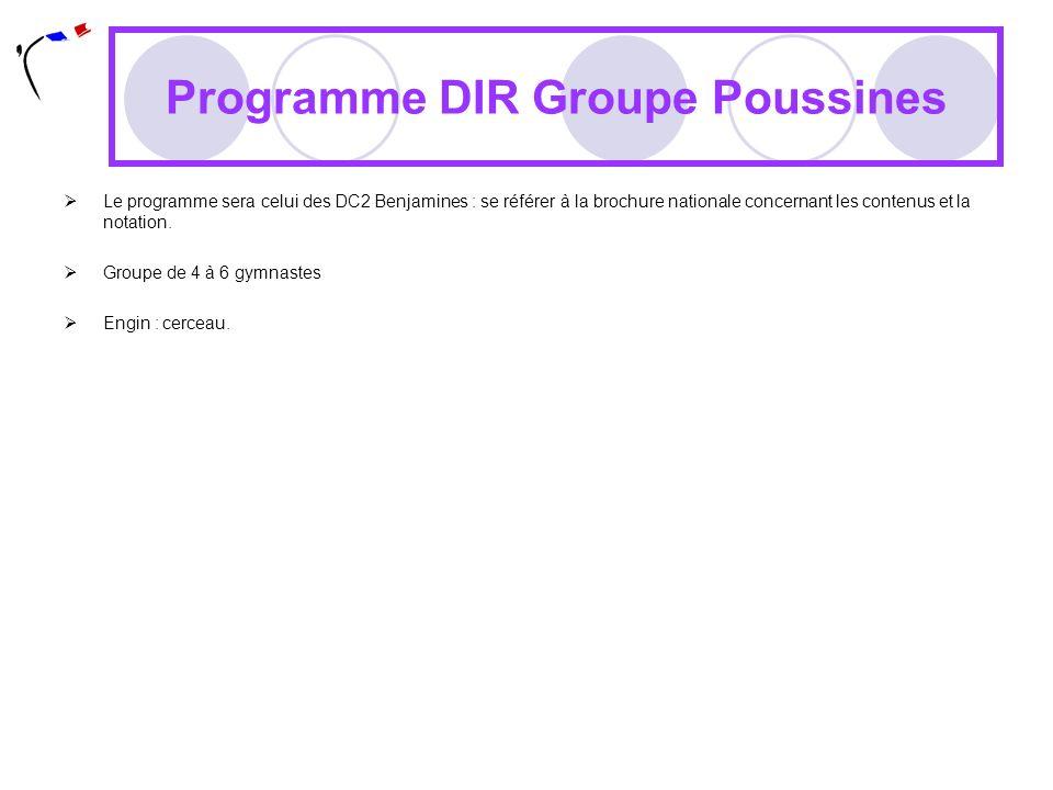 Programme DIR Groupe Poussines Le programme sera celui des DC2 Benjamines : se référer à la brochure nationale concernant les contenus et la notation.
