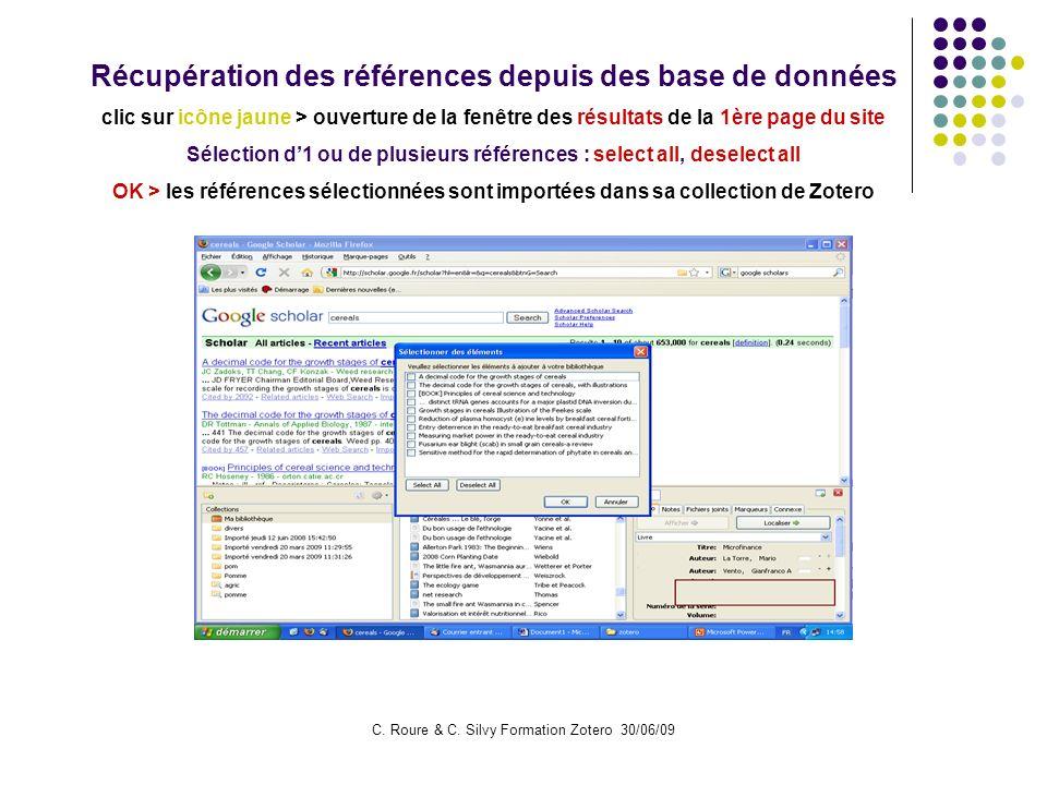 C. Roure & C. Silvy Formation Zotero 30/06/09 Récupération des références depuis des base de données clic sur icône jaune > ouverture de la fenêtre de