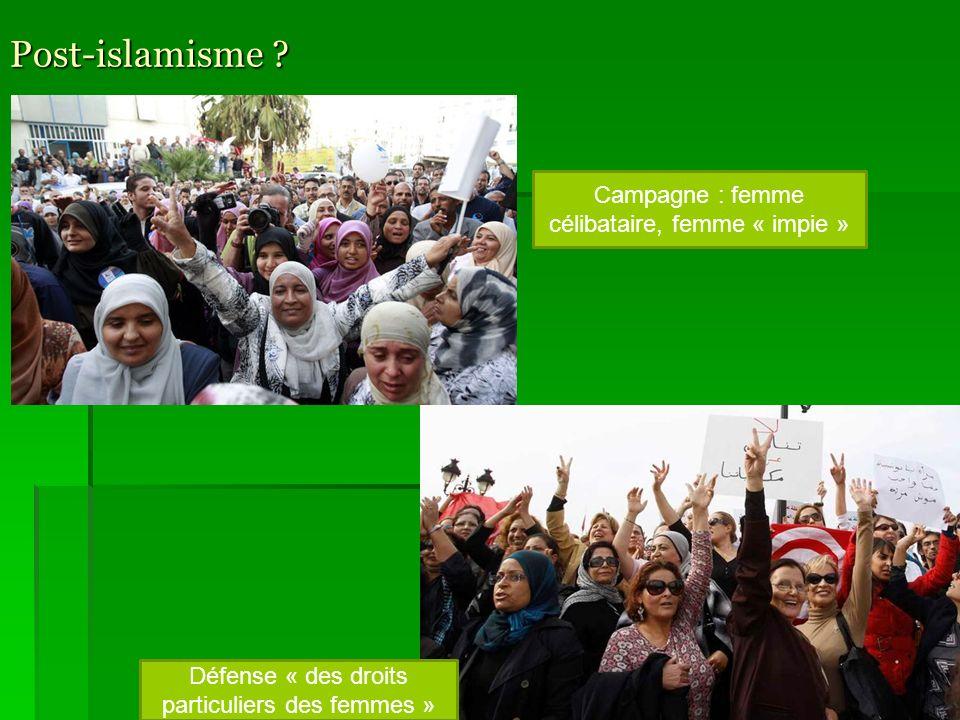 Post-islamisme ? Congrès des frères musulmans, Tunis, 2011. Démocratisation Pluralisme