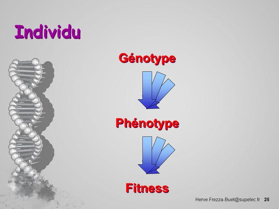 Herve.Frezza-Buet@supelec.fr 25 Individu Génotype Phénotype Fitness