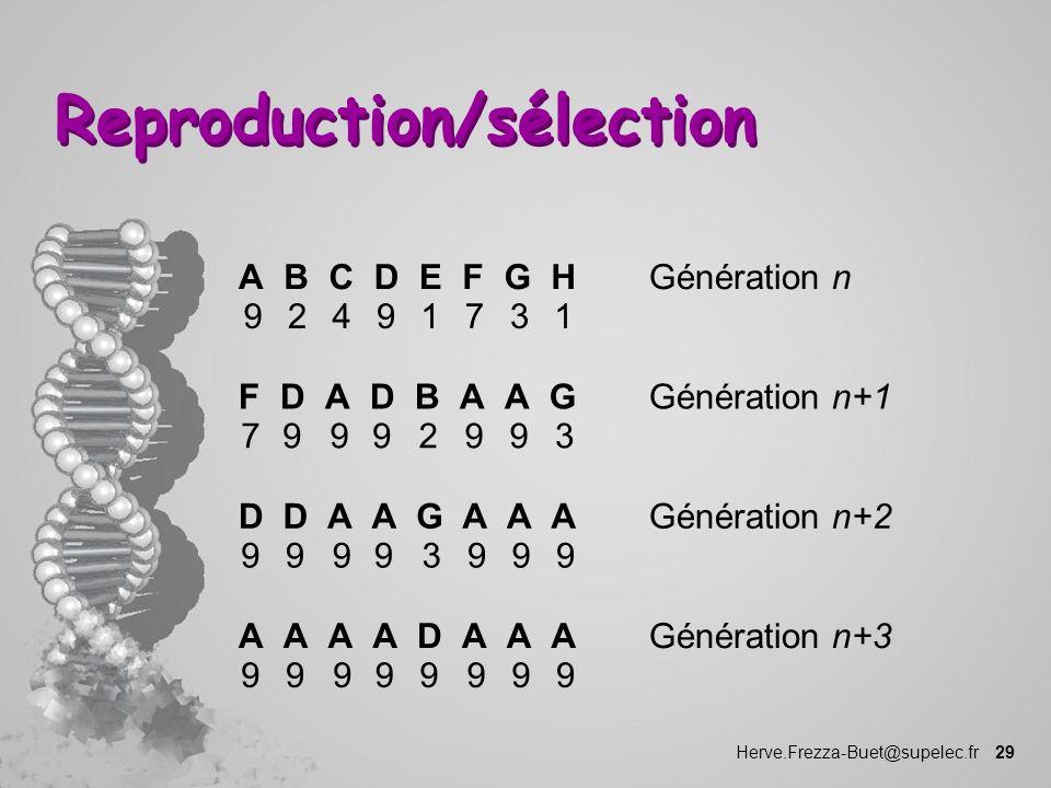 Herve.Frezza-Buet@supelec.fr 29 Reproduction/sélection Génération nA 9 B 2 C 4 D 9 E 1 F 7 G 3 H 1 Génération n+1F 7 D 9 A 9 D 9 B 2 A 9 A 9 G 3 Génér
