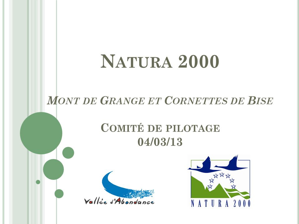 N ATURA 2000 M ONT DE G RANGE ET C ORNETTES DE B ISE C OMITÉ DE PILOTAGE 04/03/13