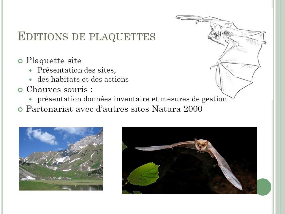 E DITIONS DE PLAQUETTES Plaquette site Présentation des sites, des habitats et des actions Chauves souris : présentation données inventaire et mesures