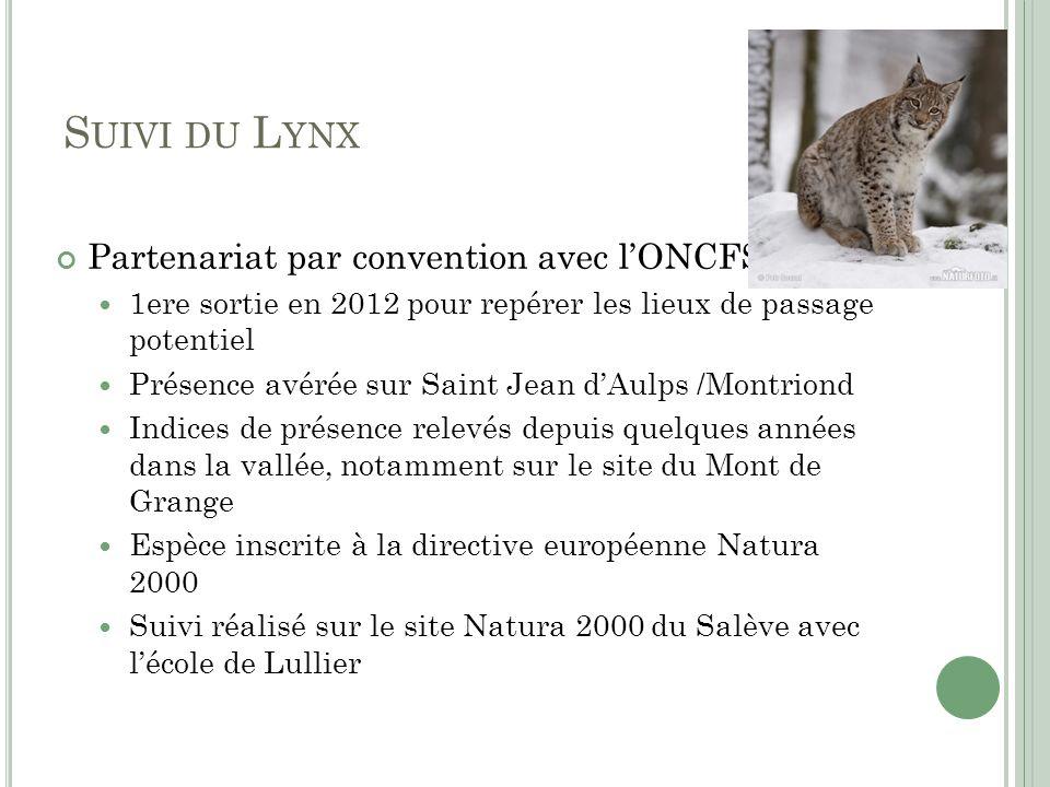 S UIVI DU L YNX Partenariat par convention avec lONCFS 1ere sortie en 2012 pour repérer les lieux de passage potentiel Présence avérée sur Saint Jean