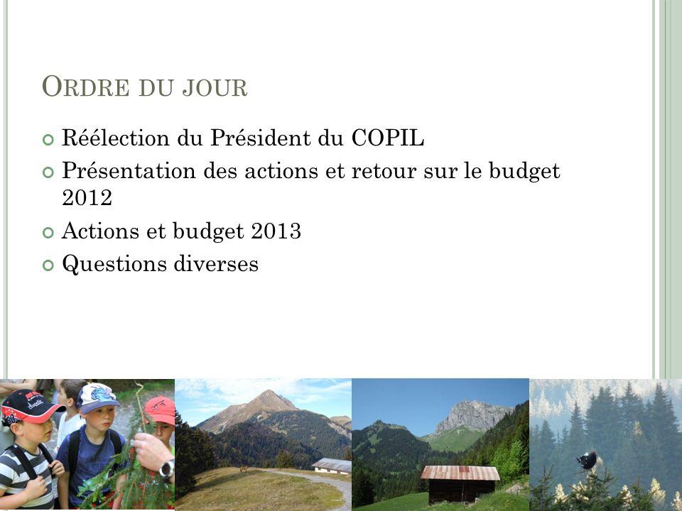 O RDRE DU JOUR Réélection du Président du COPIL Présentation des actions et retour sur le budget 2012 Actions et budget 2013 Questions diverses