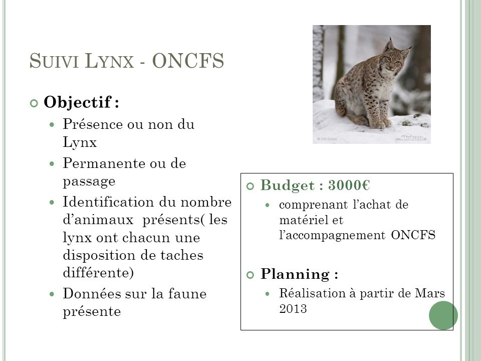 S UIVI L YNX - ONCFS Objectif : Présence ou non du Lynx Permanente ou de passage Identification du nombre danimaux présents( les lynx ont chacun une d