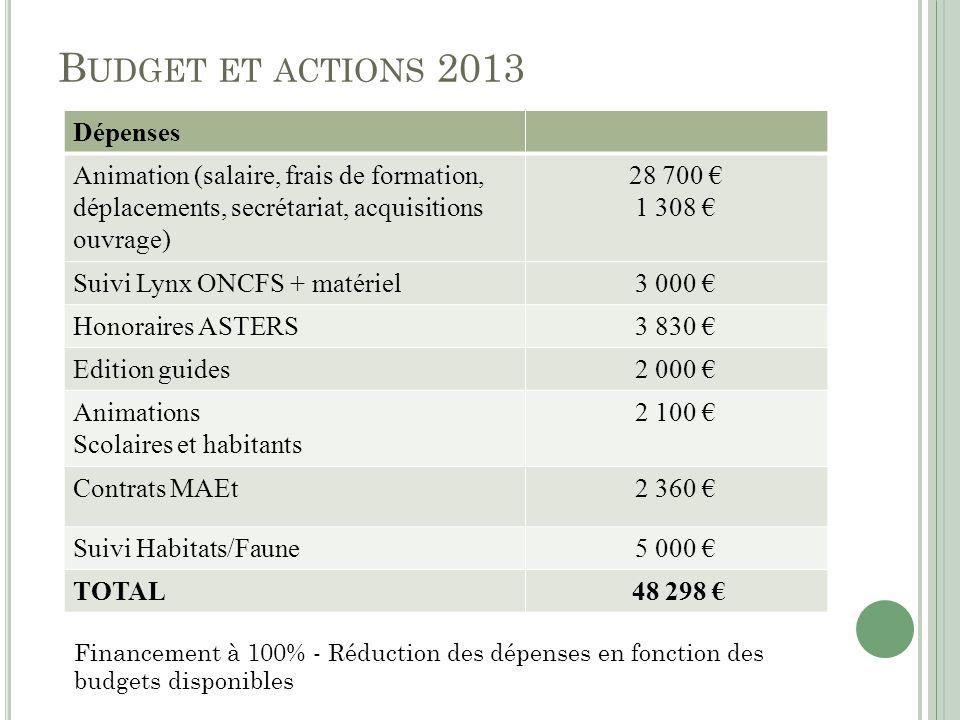 B UDGET ET ACTIONS 2013 Dépenses Animation (salaire, frais de formation, déplacements, secrétariat, acquisitions ouvrage) 28 700 1 308 Suivi Lynx ONCF