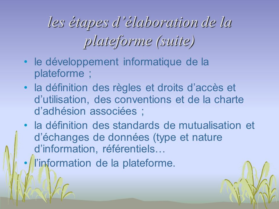 les étapes délaboration de la plateforme (suite) le développement informatique de la plateforme ; la définition des règles et droits daccès et dutilis