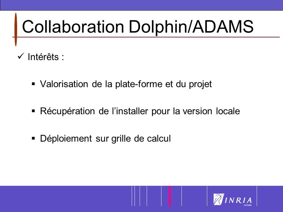 Collaboration Dolphin/ADAMS Intérêts : Valorisation de la plate-forme et du projet Récupération de linstaller pour la version locale Déploiement sur grille de calcul