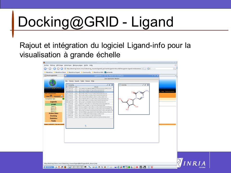 Docking@GRID - Ligand Rajout et intégration du logiciel Ligand-info pour la visualisation à grande échelle