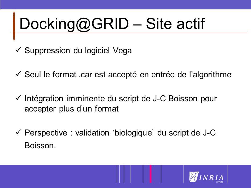 Docking@GRID – Site actif Suppression du logiciel Vega Seul le format.car est accepté en entrée de lalgorithme Intégration imminente du script de J-C Boisson pour accepter plus dun format Perspective : validation biologique du script de J-C Boisson.