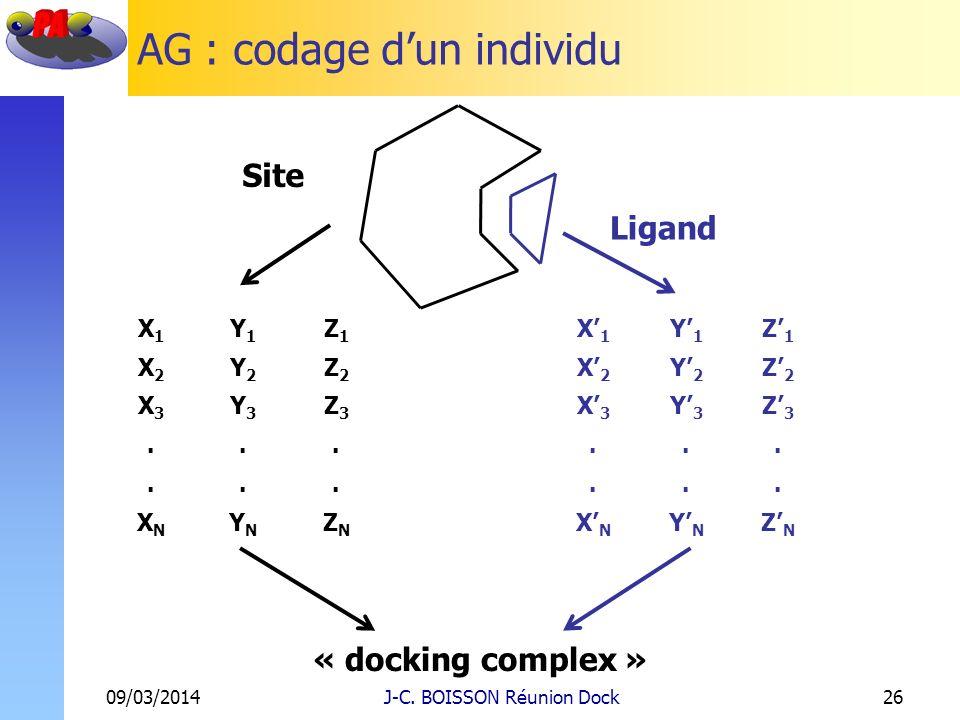 AG : codage dun individu 09/03/2014J-C. BOISSON Réunion Dock26 Site Ligand X1X1 Y1Y1 Z1Z1 X2X2 Y2Y2 Z2Z2 X3X3 Y3Y3 Z3Z3...... XNXN YNYN ZNZN X1X1 Y1Y1