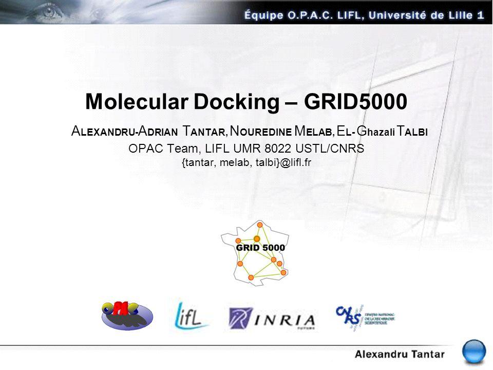 Molecular Docking – GRID5000 A LEXANDRU- A DRIAN T ANTAR, N OUREDINE M ELAB, E L- G hazali T ALBI OPAC Team, LIFL UMR 8022 USTL/CNRS {tantar, melab, t
