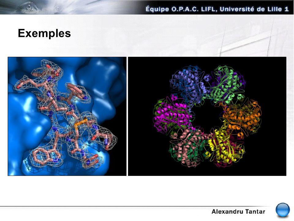 Structure moléculaire des protéines Structure d un acid aminé -.back-bone.