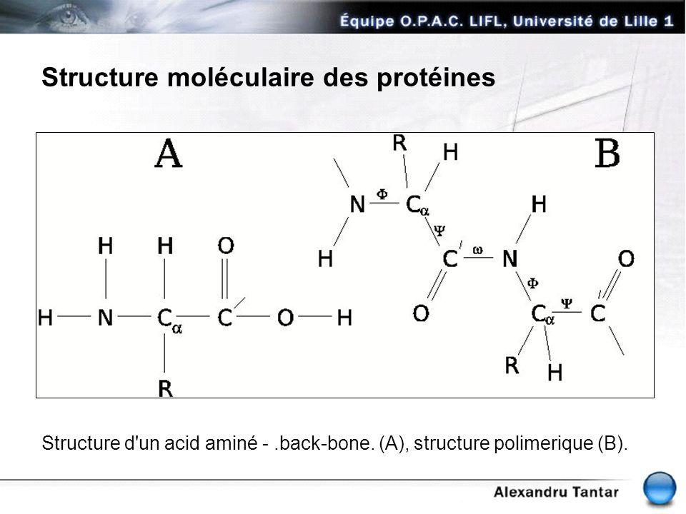 Structure moléculaire des protéines Structure d'un acid aminé -.back-bone. (A), structure polimerique (B).